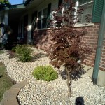 st-louis-landscaping (24)