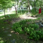 st-louis-landscaping (27)
