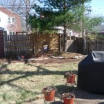 st-louis-landscaping (9)